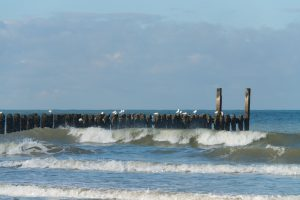 Breakers at Domburg