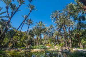 Botanic garden Huerto del Cura in Elx